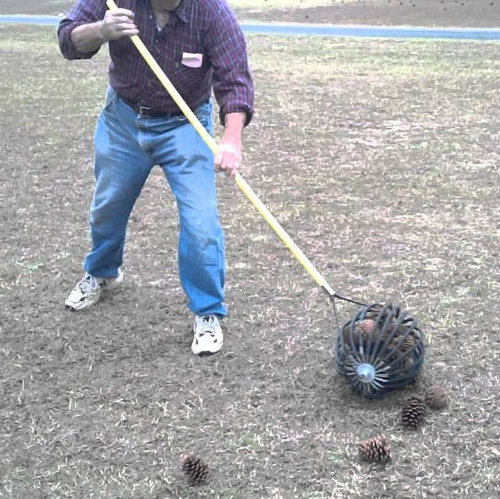 Pine Cone Picker Upper Wizard